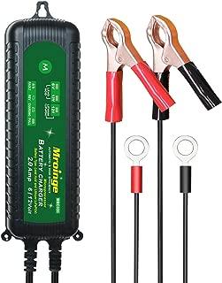 Best leisure diagnostic battery Reviews