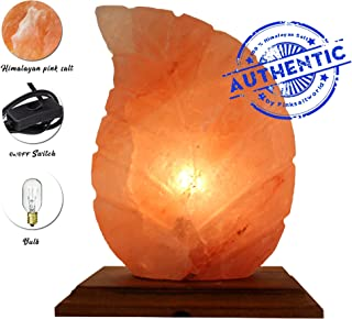 Natural Rock Hymilayian Salt Lamp - Genuine Wood Base Salt Lamp with On and Off Switch/Dimmer - 5-7 Lbs - Bulb with 6-8 Inches UL Electric Corded (Leaf)