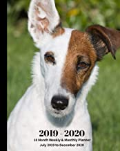 2019 - 2020 | 18 Month Weekly & Monthly Planner July 2019 to December 2020: Smooth Fox Terrier Dog England Pets Vol 53 Monthly Calendar with U.S./UK/ ... Holidays– Calendar in Review/Notes 8 x 10 in.