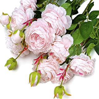 MaxFlowery New Mixed Blooms Buds Silk English Cabbage Rose Spays in Blush Pink (4 Branches /Box), Faux Flowers Greenery for Wedding Home Business Decoration