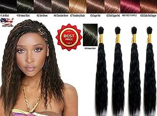 Best human hair braiding wet wavy Reviews
