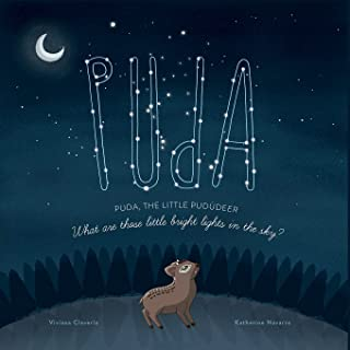 Puda, the little Pudúdeer: What are those little bright lights in the sky?: 1