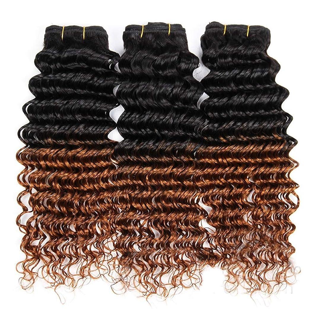 トリムチャレンジ事前YESONEEP 100%人毛横糸ディープウェーブカーリーヘアバンドル - 1B / 30ブラックtoブラウン2トーンカラーヘアエクステンションロングカーリーウィッグ (色 : ブラウン, サイズ : 12 inch)