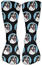 Funny Bernese Mountain Dog Face Unisex Novelty Crew Socks Ankle Dress Socks Fits Shoe Size 6-10