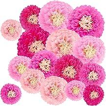 "Winlyn 16 Pcs Paper Flower Decorations Set Tissue Paper Flowers Pom Paper Flowers 4 Pink Colors 6.7"" 8.7"" 10.6"" 13"" for Ba..."