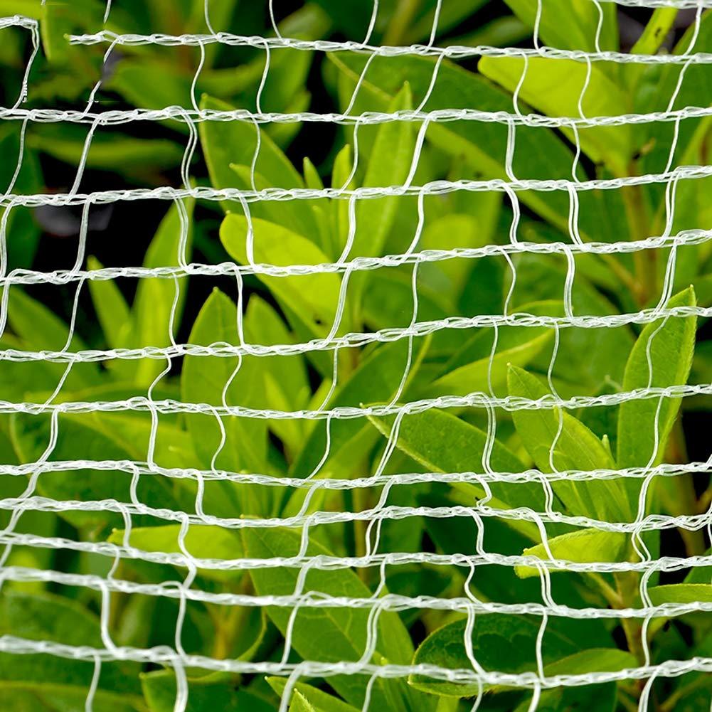 Ruber Red Protectora para árboles frutales, Malla para pájaros para jardín, Fresa, Ciervo, Planta de Estanque de Piscina, Reutilizable, Resistente, sin enredos, Nailon: Amazon.es: Jardín
