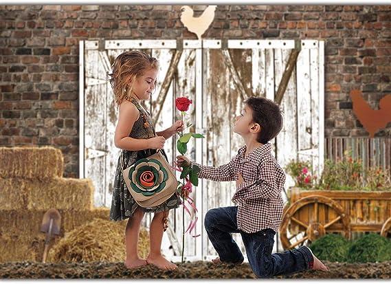 Funnytree Frühlingsfarm Tür Hintergrund Für Kamera