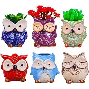 ROSE CREATE 6 Pcs 3 Inches Owl Pots, Little Ceramic Succulent Owl Planters with Drainage Holes