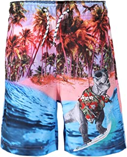 Dolcevida Boy's Quick Dry Beach Board Shorts 3D Dinosaur Print Swim Trunks with Pockets & Mesh Lining