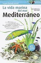 Mejor Fauna Del Mar Mediterraneo