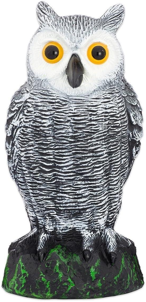 Bird Blinder Scarecrow Fake Owl Decoy - Pest Repellent Garden Protector – (Small)