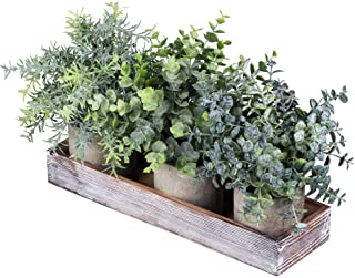 Set of 3 Mini Potted Artificial Eucalyptus Plants Faux Rosemary Plant Assortment with..