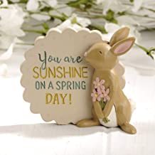 Blossom Bucket 191-12023 You are You are Sunshine Plaque with Bunny, Multi-Colored