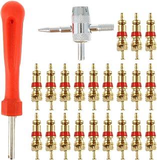 Wakauto 1 conjunto de ferramentas de remoção de haste de válvula de pneu com 30 núcleos de válvula, ferramenta de válvula ...