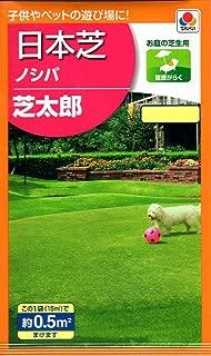 【種子】日本芝 ノシバ 芝太郎 タキイ種苗のタネ