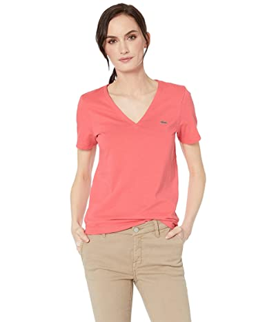 Lacoste Short Sleeve Classic Supple Jersey V-Neck T-Shirt (Calypso) Women