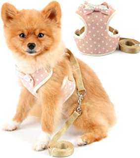 SELMAI Harness Pattern Adjustable Chihuahua