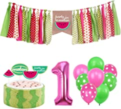 Watermelon Theme Party Kits Supplies Highchair Banner Cake Cupcake Toppers 1st Birthday Fruit Party Decoration Set Handmade Photo Shoot Agate Polka Dot Balloon Baby Shower for Girls boy kids