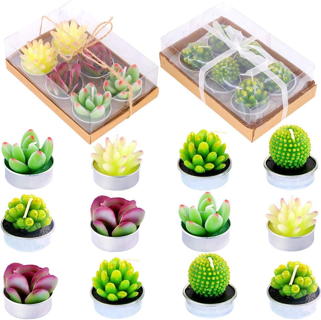 Bargain sale Glarks Cute Tea Lights Tealight Succulent Candles Bi for Free Shipping New Cactus
