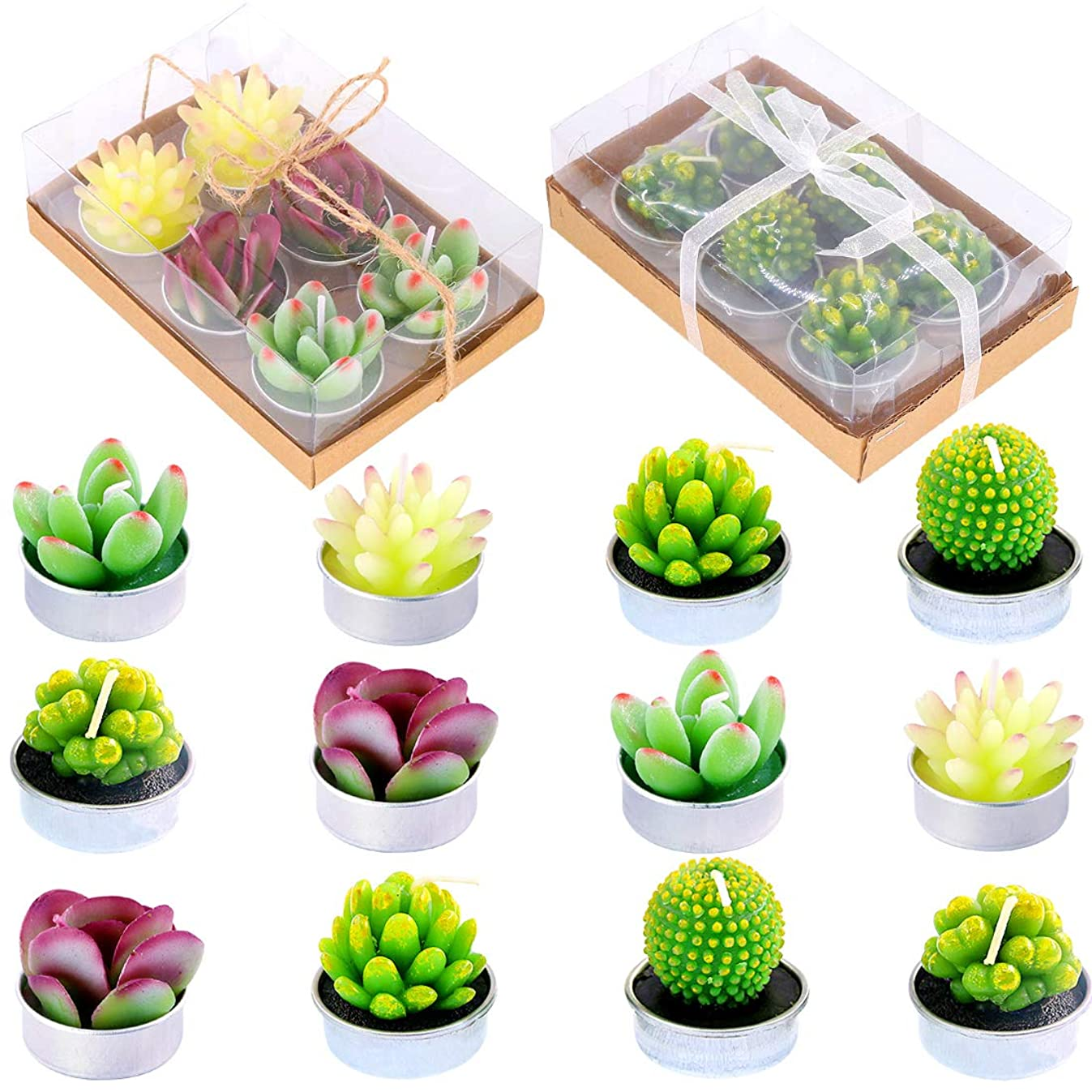 Glarks Cute Tea Lights Tealight Candles, Succulent Cactus for Birthday Party Valentine's Day Wedding Spa Home Decor and DIY Gift, 12Pcs a Pack