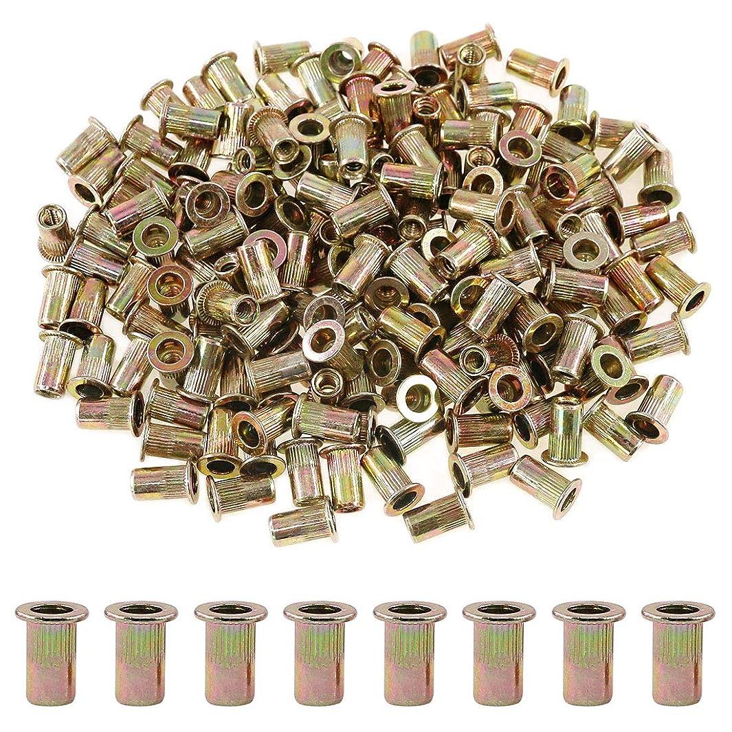 Glarks 100Pcs 10-24UNC Zinc Plated Carbon Steel Flat Head Rivnut Threaded Insert Nuts Set (10-24UNC)
