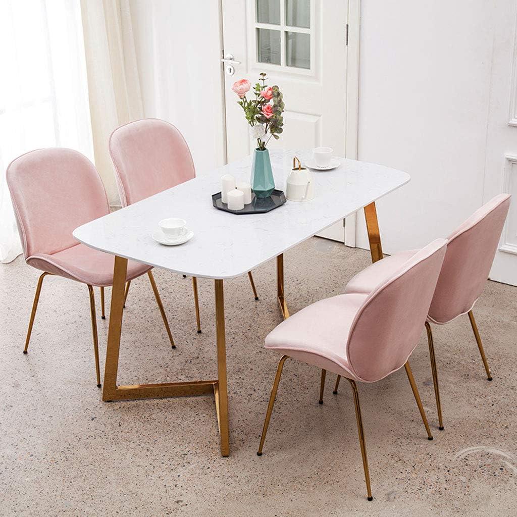 Dining chair Chaise de Salle à Manger WGZ - Design Minimaliste Moderne - Chaise de Maquillage - Chaise de café - Chaise Simple D