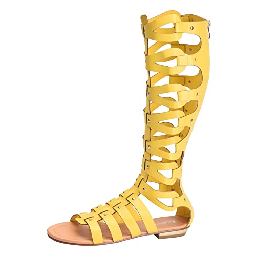 69c0d572ba9 CAMSSOO Women s Fashion Knee High Gladiator Flat Outdoor Sandals Back Zip  Shoes