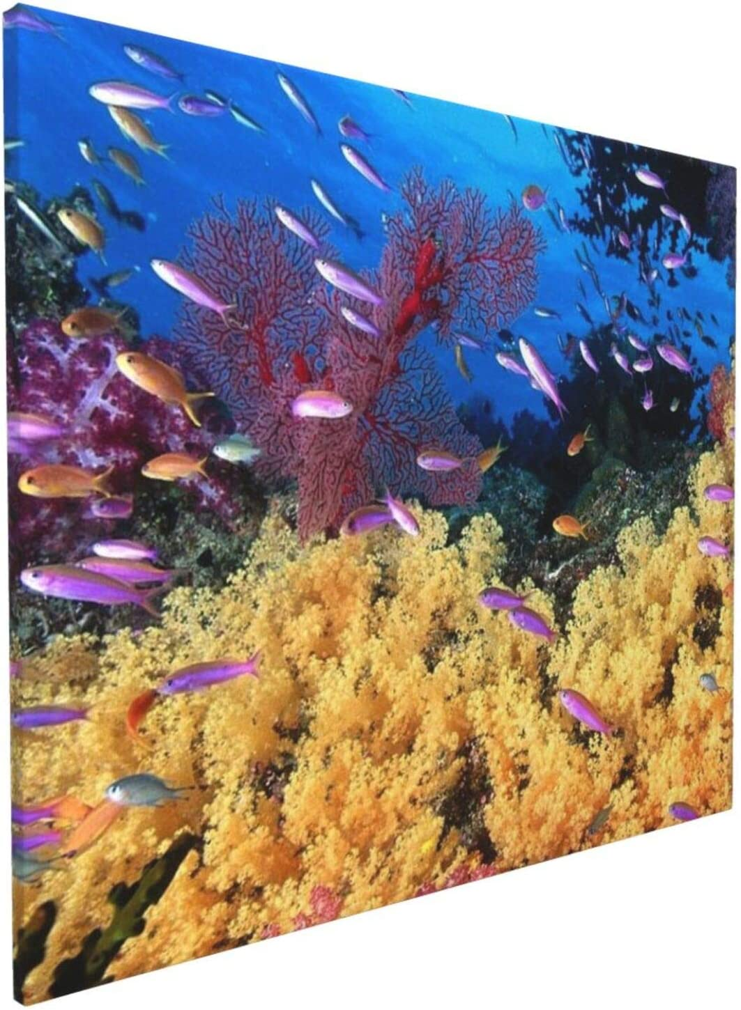 Industry No. 1 Missboom Wall Art Theme Deep Sea Dolphins Post 2021 autumn and winter new Turtles Coral And