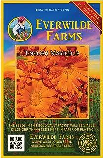 Everwilde Farms - 500 English Marigold Wildflower Seeds - Gold Vault Jumbo Seed Packet
