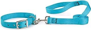 Guardian Gear Basic Nylon Double Layer Dog Leash, 6-Feet x 1-Inch Lead, Blue