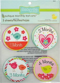 Babyville Boutique 35240 Monthly Iron-On, Little Bird And Heart (12-Count)