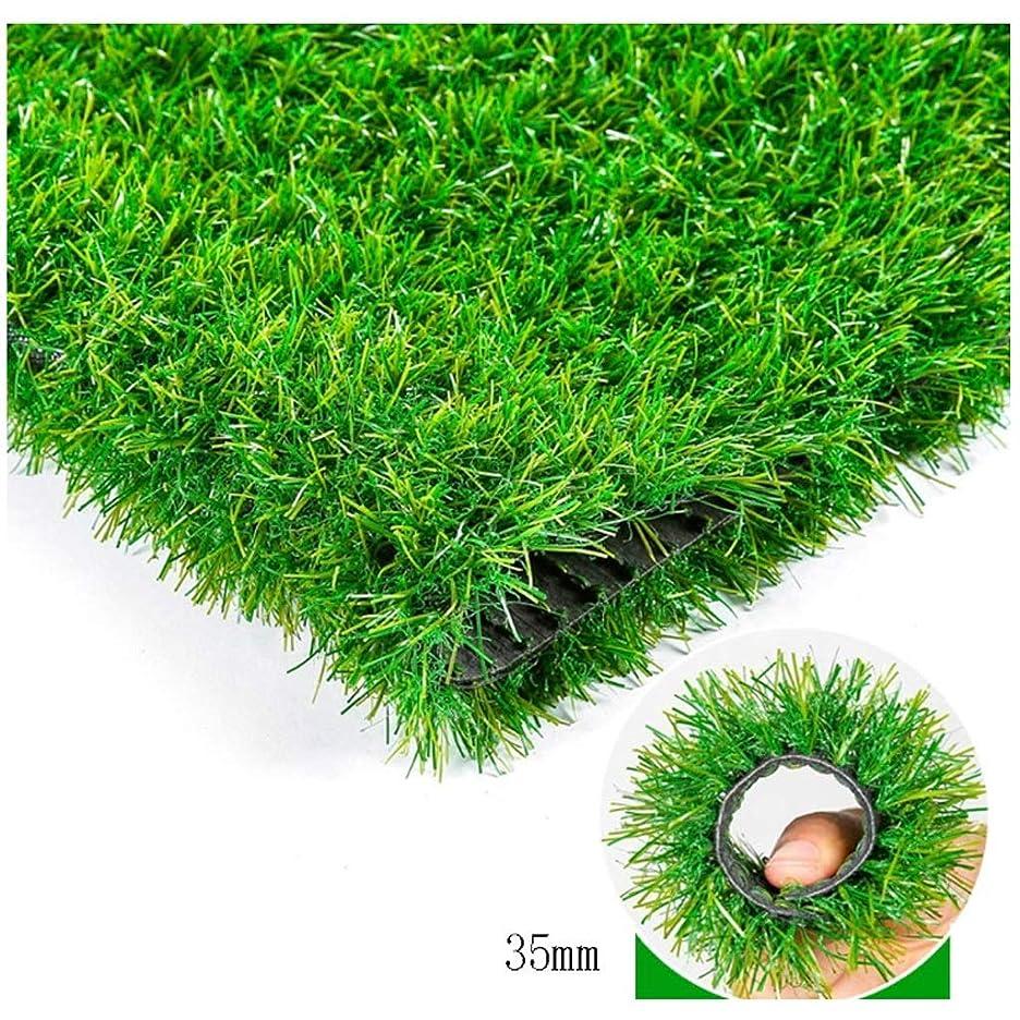 育成身元バルセロナWJ 人工芝芝生敷物人工芝マット偽ガーデン芝生バルコニー幼稚園装飾ラバーソールグリーンマット (Color : T 2cm, Size : 2*3m)