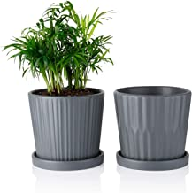 Greenaholics Medium Plant Pots - 6 Inch Grey Cylinder Ceramic Planters with Attached Saucers, Two Line Grain, Great House and Office Decor, Set of 2