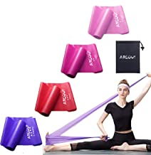 Fitnessbanden, set van 4 elastische banden, gymnastiekband met draagtas, weerstandsband, weerstandsbanden met 4 trainingsb...