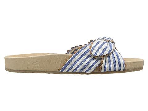 Chipmunk Blue Beattie Loeffler Randall Cream wq1A6If