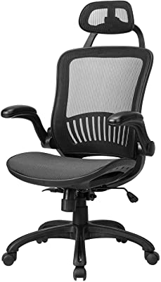 Office Chair Ergonomic Desk Chair Mesh Computer Chair with Lumbar Support Headrest Flip UP Arms Rolling Swivel Adjustable Task Chair for Adults,Black
