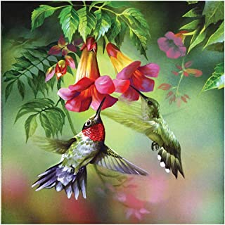 SIDOUHAK 5D DIY Diamond Painting,Full Drill Rhinestone Arts Craft for Home Wall Decor,Flowers Hummingbird,Size:30X30CM/12X12inch …