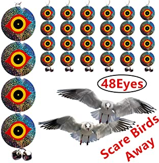 sparrow hawk bird scarer