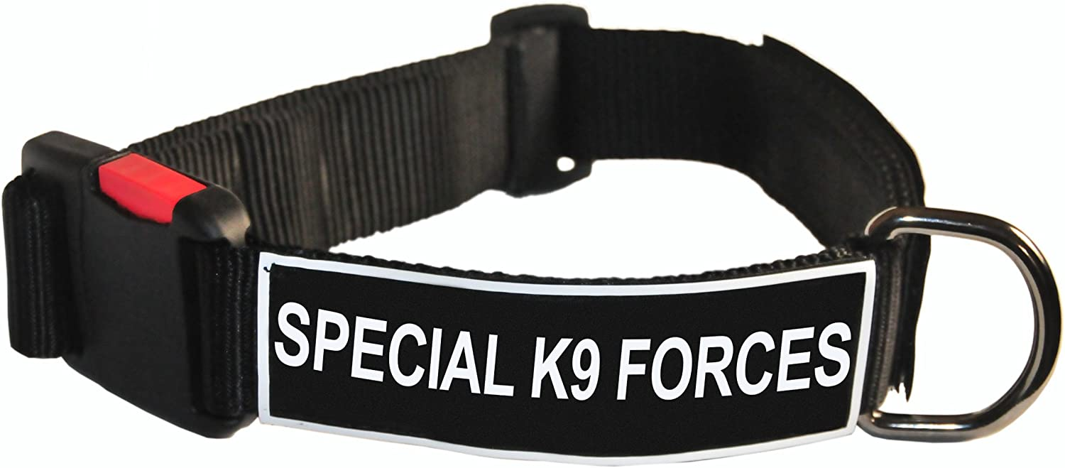 Dean and Tyler Patch Collar , Nylon Dog Collar with SPECIAL K9 FORCES Patches  Black  Size  Small  Fits Neck 18Inch to 21Inch