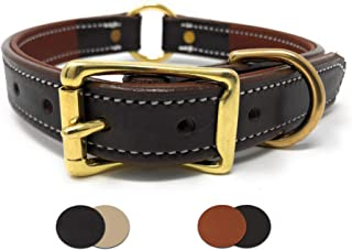 Padded Leather Dog Collar with Genuine Leather and Soft Buffalo Skin Padding | for Small, Medium, and Large Dogs