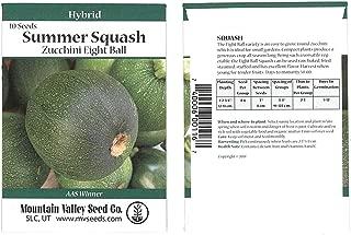 Eight Ball Hybrid Zucchini Summer Squash Garden Seeds - 10 Seed Packet - Non-GMO - Vegetable Gardening Seed