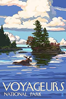 Voyageurs National Park, Minnesota - Moose Swimming (9x12 Art Print, Wall Decor Travel Poster)