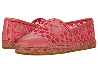 COACH Cleo Espadrille (Orchid Signature C Mesh/Leather) Women
