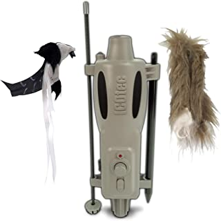 Best wounded woodpecker decoy Reviews