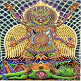 NEO Human Evolution by Chris Dyer Design Psychedelic BLOTTER Art Print Perforated Sheet, Acid Free LSD Art Paper 30x30, 900 tabs, 7.5 inch, in Clear Protective Sleeve
