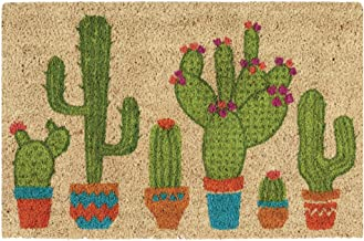 Aoopistc Cartoon Cactus Doormat Cute Non Slip Doormat Mud Dirty Floor MatsThin Area Rugs, 23.6 x 17.5-inch