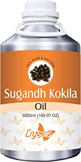Crysalis Sugandh Kokila Oil (Cinnamomurn-Cecidodaphne) 100% Natural Pure Essential Oil 250ml