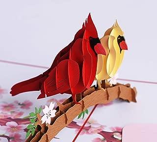 3D Popup Card of Cardinal Bird, Paper Art & Handicrafts, Greeting Cards, Handmade Gifts by PQDGlobal (Cardinal couple)