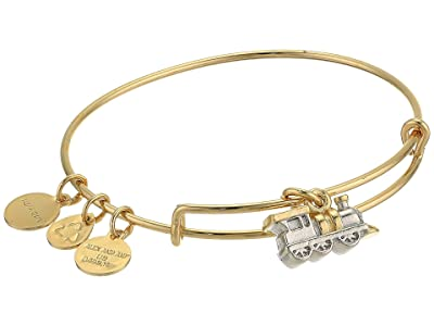 Alex and Ani Charity By Design, Train Bangle Bracelet, Two-Tone (Shiny Gold) Bracelet