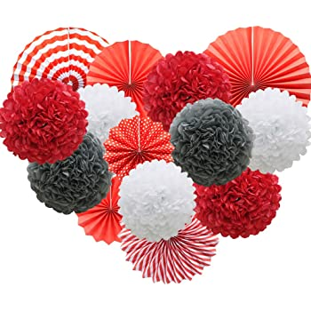 Blue 2, 10 inch Lightingsky 10pcs Tissue Paper Pom Poms DIY Decorative Flowers Ball Perfect for Party Wedding Home Outdoor Decoration